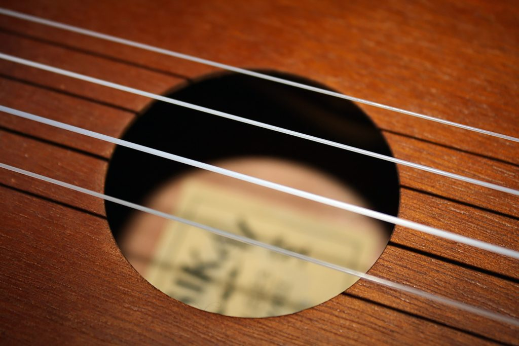 Close up of Ukelele Strings
